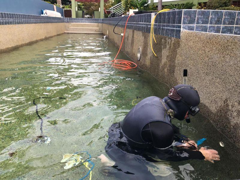 Diver performing pool leak detection on PebbleTec pool surface.